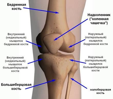 Воспаление сухожилий стопы мази